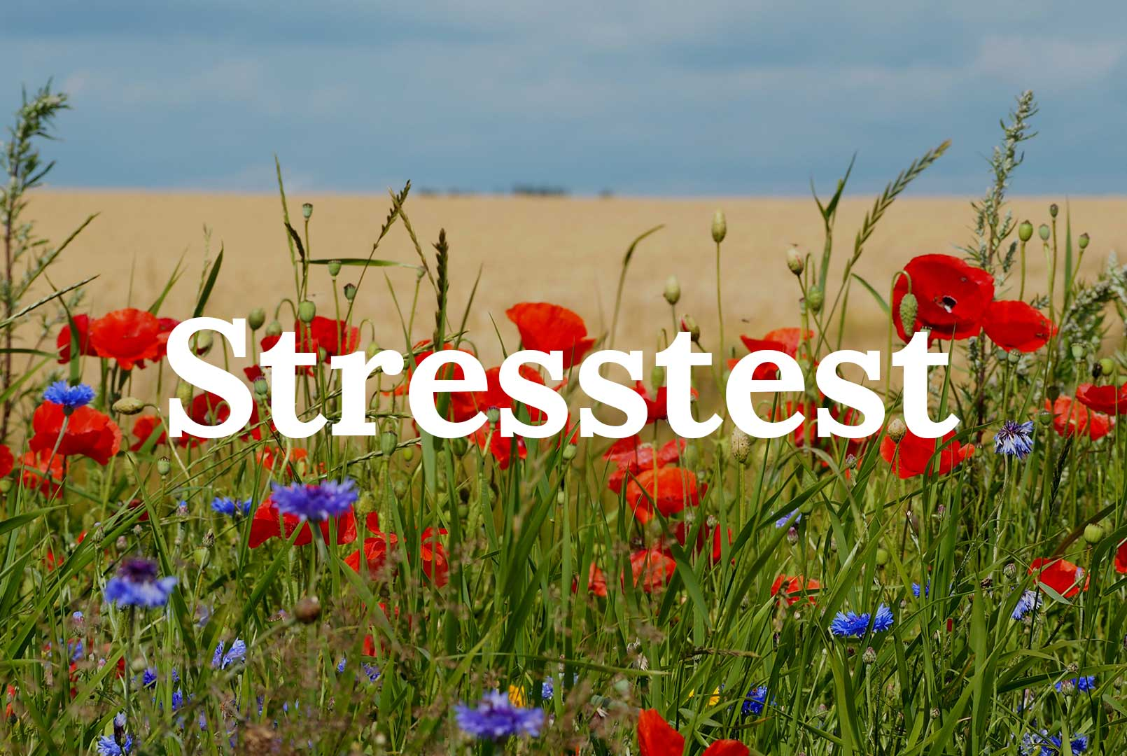 Tag en stresstest