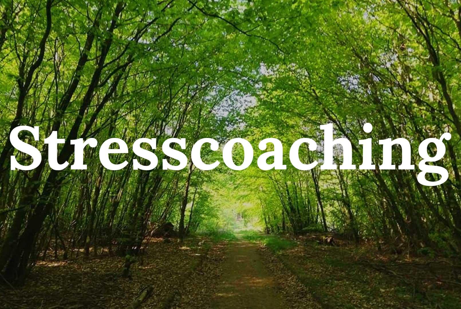 Stresscoaching